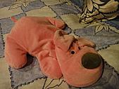 2010-09-30_瑞里印像區:我看到狗狗玩偶就會不可控制的愛上...@@