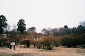 [Film 36] 日光 (日本)、瑞里 (嘉義)、南田 (台東):(日光) 霧降瀑布'旁的景色