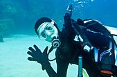 """2014/11/01,02_意料之外的墾丁Fun Dive:拿著手電筒很難比 """"YA"""" 阿....."""