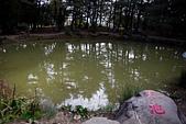 2014-11-24_福壽山農場 Day1:超鳥的天池