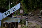 2013-06-08/09_竹崎公園、交力坪車站、瑞里雲海、螢光蕈、海鼠山日出:距離阿里山30.3Km