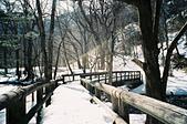 [Film 35] 湯湖溫泉+湯滝+戰場之原_2017年03月21日:勉強踩著我不夠深的雪靴,跌跌撞撞的從前面照片中的遠方,走到小橋前XD