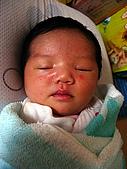 2008年10月15日小貝比出生:IMG_0009.jpg