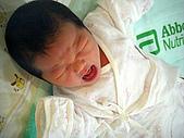 2008年10月15日小貝比出生:DSCF0377.jpg