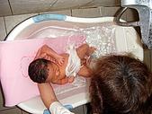 2008年10月15日小貝比出生:DSCF0012.jpg