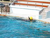 2010.07.25野柳海洋公園:IMG_1012.JPG