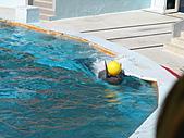 2010.07.25野柳海洋公園:IMG_1013.JPG