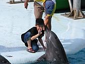 2010.07.25野柳海洋公園:IMG_1016.JPG