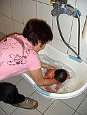 2008年10月15日小貝比出生:DSCF0396.jpg