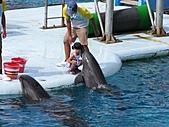 2010.07.25野柳海洋公園:IMG_1017.JPG