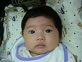 二,三個月前的小珊珊:DSCF0582