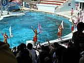 2010.07.25野柳海洋公園:IMG_0977.JPG