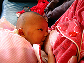 2008年10月15日小貝比出生:IMG_0004a.jpg