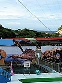 2010.07.25野柳海洋公園:IMG_0992.JPG