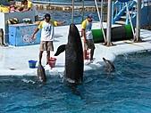 2010.07.25野柳海洋公園:IMG_1001.JPG