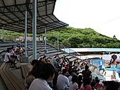 2010.07.25野柳海洋公園:IMG_0958.JPG