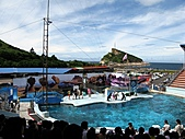 2010.07.25野柳海洋公園:IMG_0959.JPG
