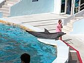 2010.07.25野柳海洋公園:IMG_1004.JPG