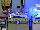 2008年10月15日小貝比出生:IMG_0022.JPG