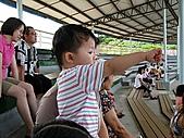 2010.07.25野柳海洋公園:IMG_0961.JPG