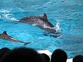 2010.07.25野柳海洋公園:IMG_1007.JPG