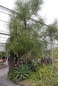 竹東綠世界生態農場: