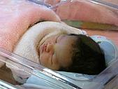 2008年10月15日小貝比出生:IMG_0026.JPG
