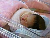 2008年10月15日小貝比出生:IMG_0027.JPG