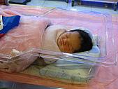 2008年10月15日小貝比出生:IMG_0028.JPG