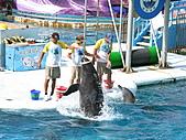 2010.07.25野柳海洋公園:IMG_1008.JPG