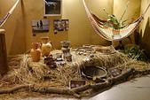 20130822亞馬遜河生態探險展: