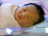 2008年10月15日小貝比出生:IMG_0034.JPG