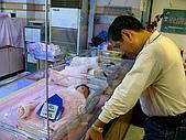 2008年10月15日小貝比出生:IMG_0039.JPG