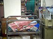 2008年10月15日小貝比出生:DSCF0359.jpg