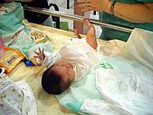 2008年10月15日小貝比出生:DSCF0362.jpg