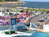 2010.07.25野柳海洋公園:IMG_1010.JPG