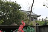 20111018林口霧社街之賽德克.巴萊片場: