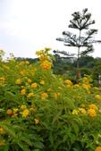20120705桃園大溪的愛情故事館: