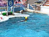2010.07.25野柳海洋公園:IMG_1011.JPG