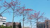 2017江南春遊:IMAG0257.jpg