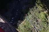 高空彈跳+拉拉山:IMG_5280.jpg