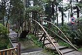 溪頭&松林町(妖怪村):IMG_9245.jpg