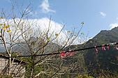 高空彈跳+拉拉山:IMG_5237.jpg