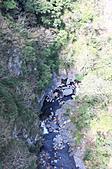 高空彈跳+拉拉山:IMG_5242.jpg