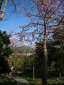 天空之城:IMG_7751.JPG