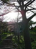 天空之城:IMG_7756.JPG