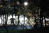 2009.11.20  福壽山農場:DSC_4934.JPG