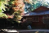 2009.11.20  福壽山農場:DSC_4978.jpg