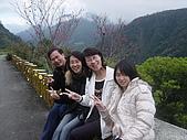 2007 除夕花東之旅:2007除夕台東鹿野5.jpg