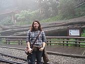 2009阿里山櫻花季:DSC01432.jpg